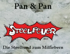 Cover Steelfever
